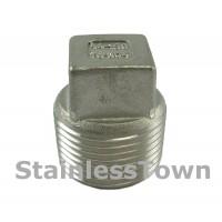 Stainless Pipe Plugs
